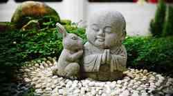 Kitajski horoskop za oktober in november 2011