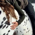 Konj in njegovo poslanstvo terapevta (foto: Goran Antley, P. Jenko, Shutterstock)