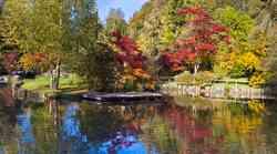 Jesenske kreacije v Arboretumu Volčji potok