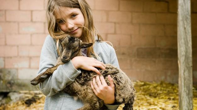 Mag. Čenčur bo skušal pojasniti, kaj za življenje in zdravje človeka, živali in okolja pomenita vegetarijanstvo in veganstvo. (foto: Shutterstock)