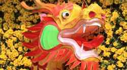 Kitajski horoskop za februar 2012