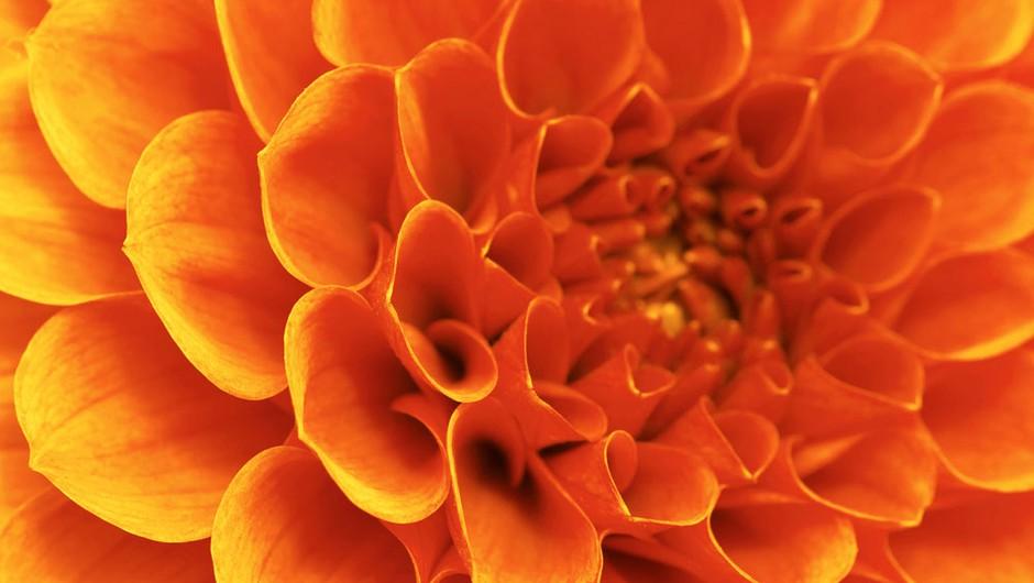 Sporočilo za današnji dan: Spremenite se v pogledih nase. (foto: Shutterstock)