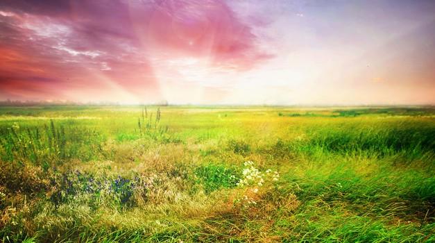 Včasih je treba pustiti naravi, da si vzame svoj davek (foto: Shutterstock)