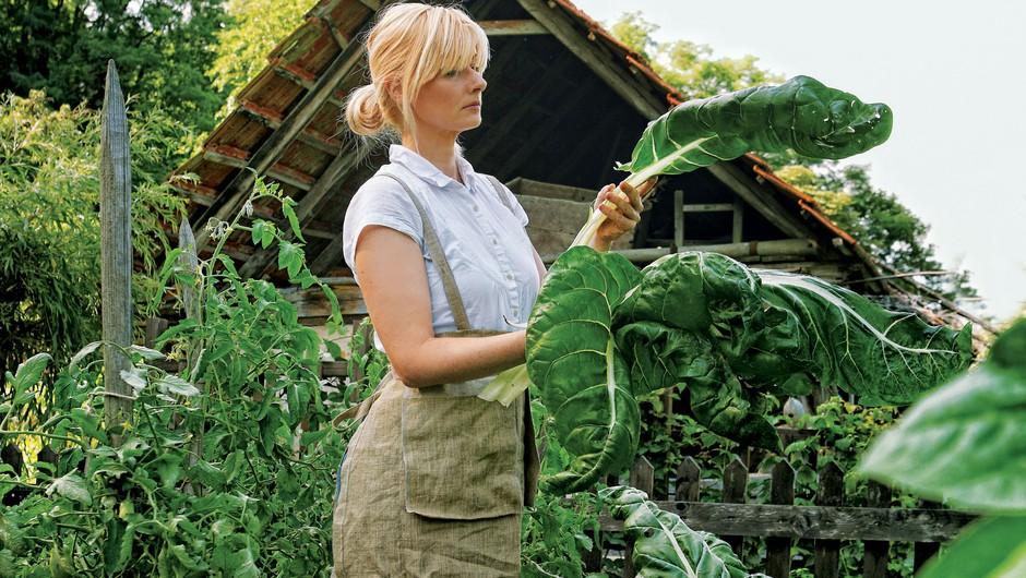 Ekološko sadje in zelenjava: Vstopite v vrt zdravja (foto: Nino Šoštarić, Shutterstock)