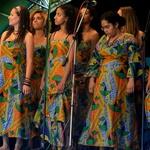 BAOFEST 2012 - festival afriške kulture (foto: Arhiv KUD Baobab)