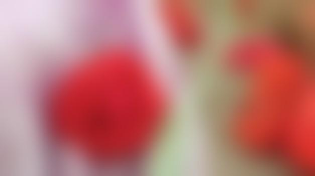 Vloga notranjih organov pri lepoti