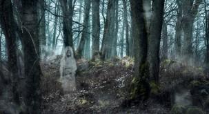4 zgodbe o nadnaravnih pojavih