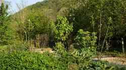Metode ekološkega vrtnarjenja
