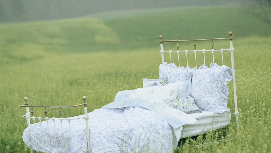 V lucidnih sanjah se zavedamo, da sanjamo.  (foto: Profimedia)