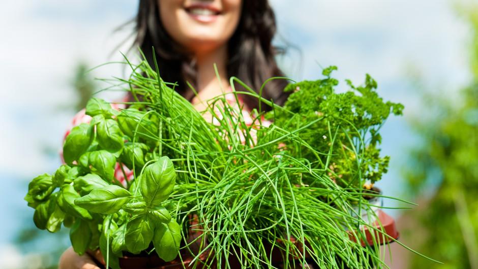 Ženska, ki pozna skrivnost zdravilnih rastlin (foto: Shutterstock)