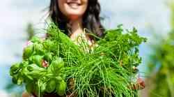 Ženska, ki pozna skrivnost zdravilnih rastlin