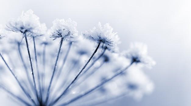 Vsi se trudimo, da bi bili ljubljeni (foto: Shutterstock)