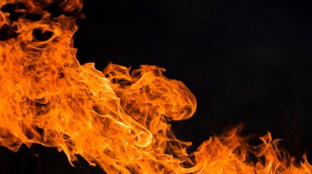 Prehrana in ognjena znamenja (oven, lev, strelec) (foto: profimedia)