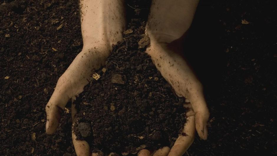 Prehrana in zemeljska znamenja (bik, devica, kozorog) (foto: profimedia)