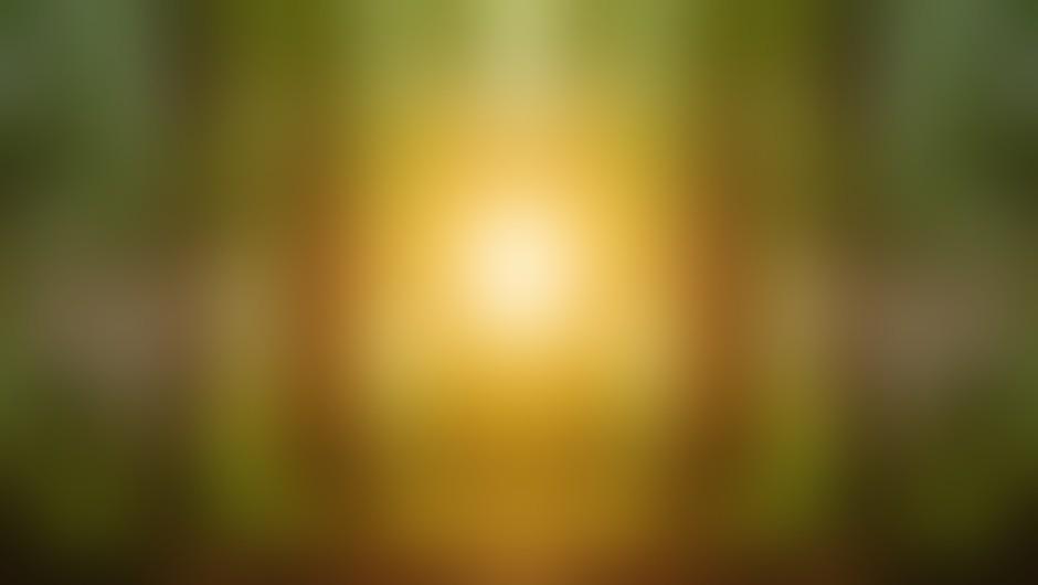 4 navade, ki vodijo v bedo