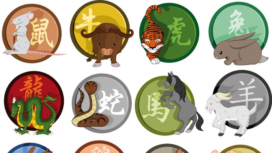 Kitajski horoskop: duhovni nasvet in smernice za obdobje od 13. do 19. julija 2015 (foto: Shutterstock)