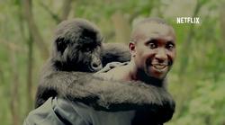 4 čustveno pretresljivi dokumentarni filmi, ki jih morate pogledati to poletje