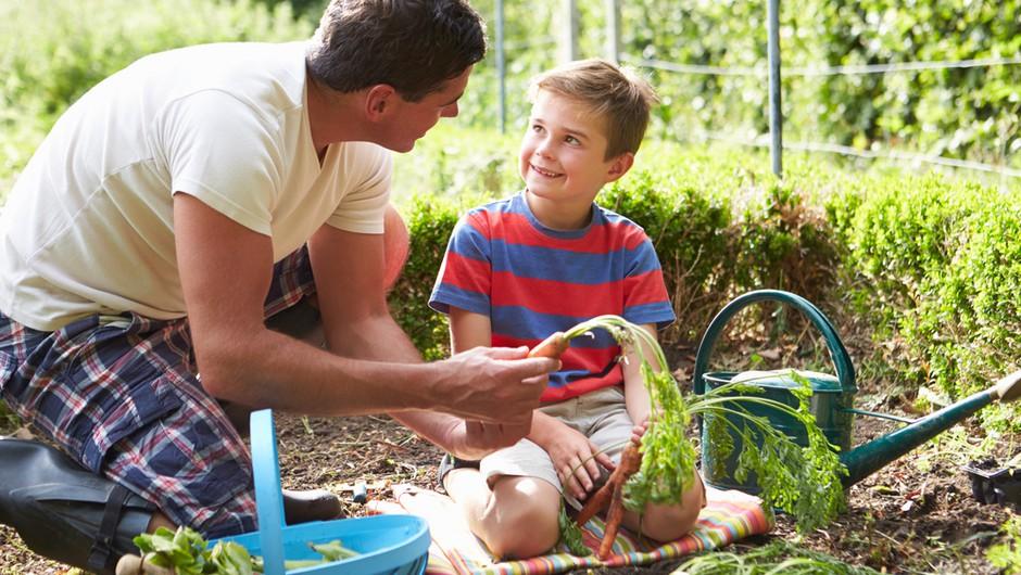 Zelenjavni vrt bi moral biti družinska vrednota (foto: Shutterstock)