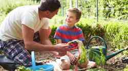 Zelenjavni vrt bi moral biti družinska vrednota
