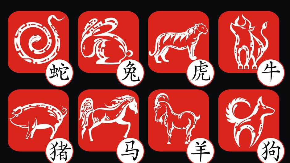 Kitajski horoskop od 7. do 13. 12. 2015 (foto: Shutterstock)