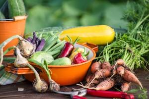 zelenjava-hrana