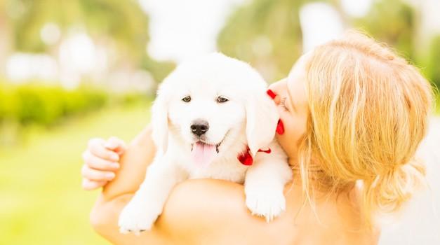 8 stvari, ki se jih lahko naučimo od hišnih ljubljenčkov (foto: Profimedia)