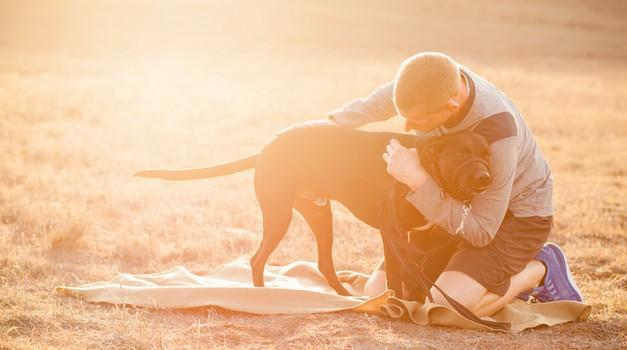 VIDEO: Psiček rešil življenje posvojitelju (foto: Profimedia)