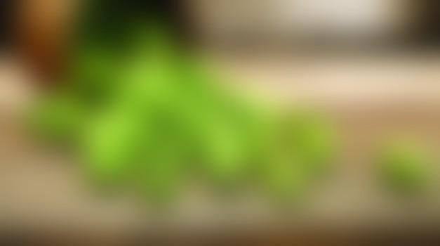 Pivovski wellnes - dobrodošla osvežitev za vaše kožo