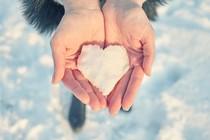 srce-sneg