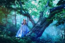 pravljica-gozd