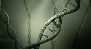 Naša DNK 'markira' prostor, zrak, predmete ...