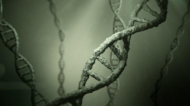 Naša DNK 'markira' prostor, zrak, predmete ... (foto: profimedia)