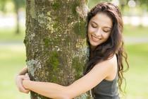 drevo-objem