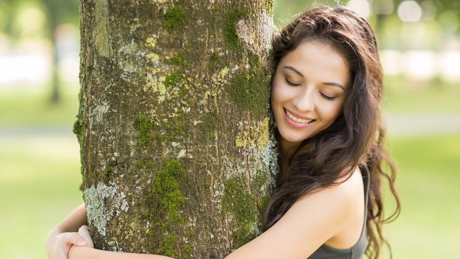 Pomoč dreves za telo in dušo (foto: profimedia)