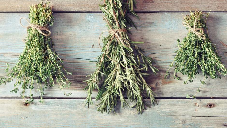 Lončnice - zaščitnice zdravja in dobrega razpoloženja (foto: profimedia)
