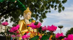 Kako se je Buda spopadal z nesramneži