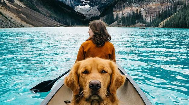Kako nas vidijo psi? (foto: profimedia)
