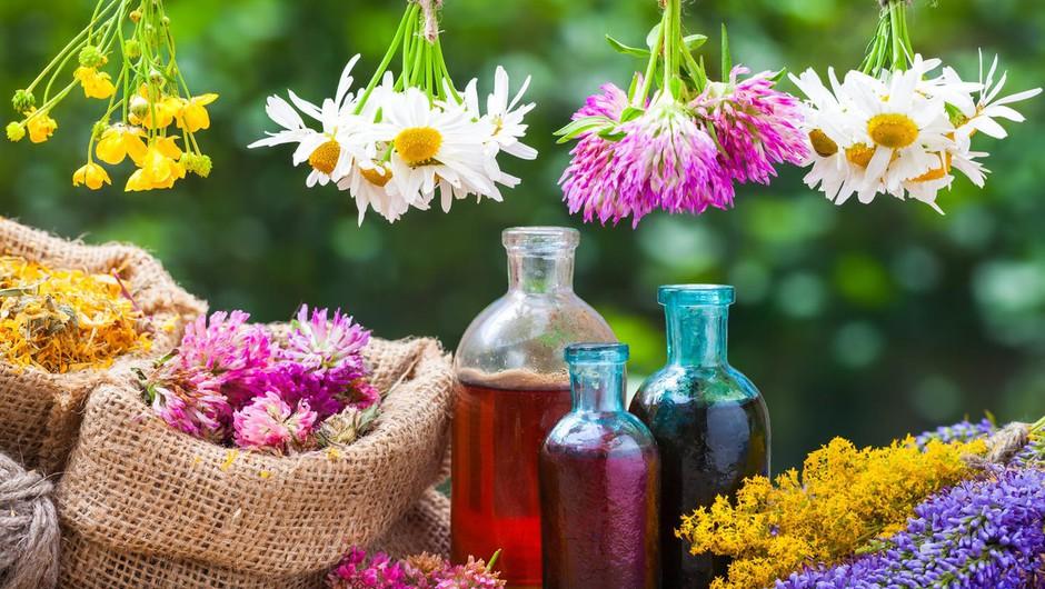 4 naravni pripravki za nego kože poleti (+ olje za sončenje) (foto: profimedia)