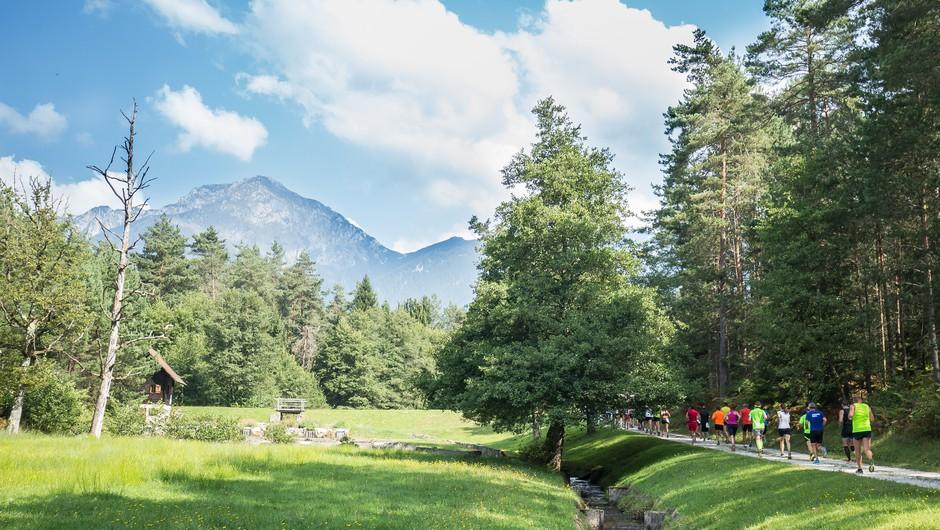 V Kamniški Bistrici nadaljevanje vseslovenske akcije Očistimo naše gore (foto: Zavarovalnica Triglav)