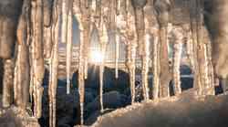 Zimski solsticij 21. 12. – Čas za novo rojstvo