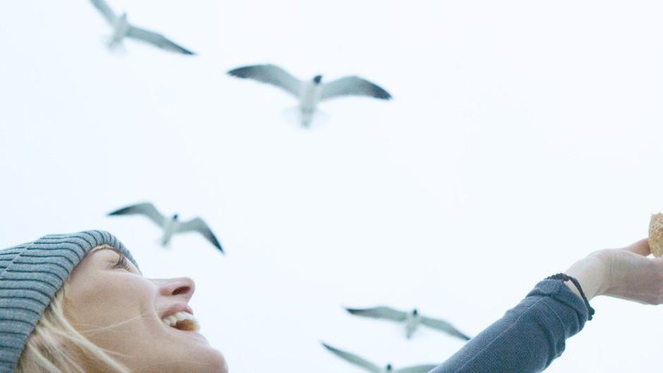 12. marec - Ptički se ženijo! (foto: profimedia)