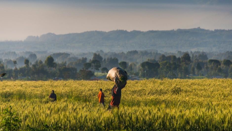5 lekcij, ki se jih je zahodnjaško dekle naučilo v afriški Ruandi (foto: profimedia)