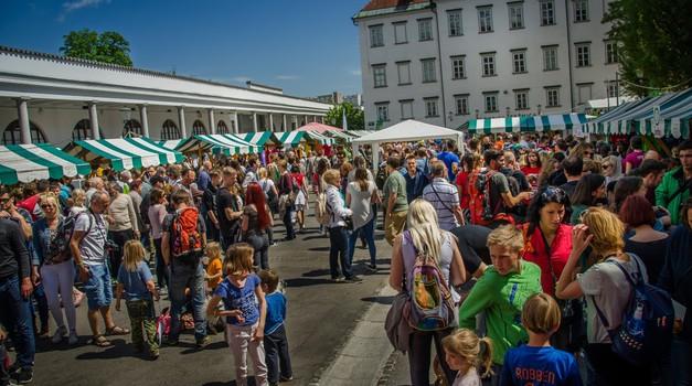 Festival Vegafest 2018 v soboto, 5. maja (foto: vegafest)