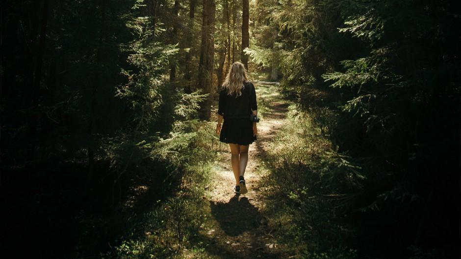V gozdovih lahko okrepimo vez z našo dušo (foto: Unsplash.com)