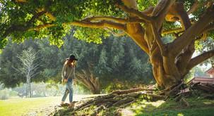 Zakaj je pomembno, da preživimo nekaj časa sami s seboj