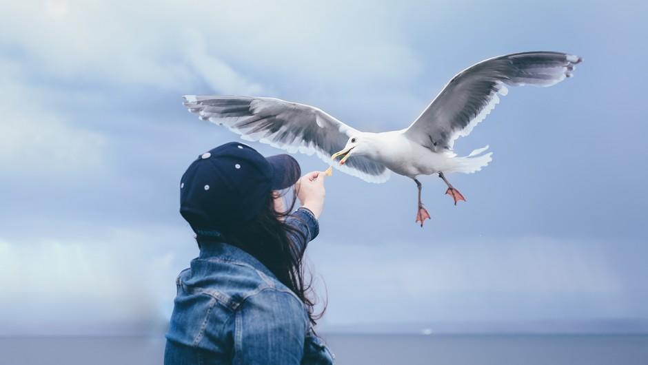 30 sporočil vaše duše (foto: Unsplash.com)