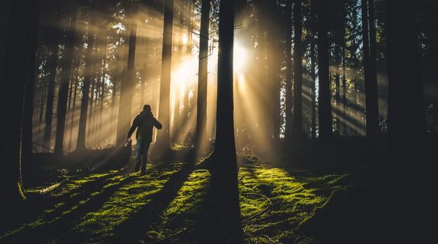 Osho: Boga ne boste našli v cerkvah (foto: unsplash)