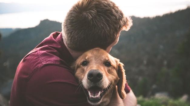 5 duhovnih lekcij, ki se jih lahko naučite od svojega psa (foto: Unsplash.com)