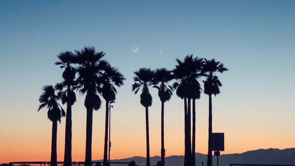 Mlaj (9. 9): Ko sanje postanejo bolj jasnovidne (foto: Unsplash.com)