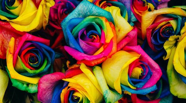 Kaj pomeni vaša najljubša barva? (foto: unsplash)